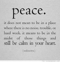 Peace it does not mean to be in a place where there is no noise trouble or hard work it means to be in the midst of those things and still be calm in your heart