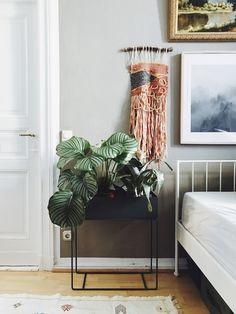 Pinterest Trend 2017: Indoor-Pflanzen und Urban Jungle Look