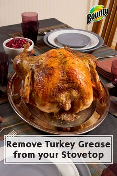 After your Thanksgiving and Christmas guests go home, it is time to tackle the task of cleaning your kitchen! Learn how Bounty Paper Towels, vinegar, and lemon juice can help you efficiently remove turkey grease from your stovetop.