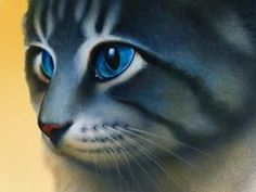 another Erin Hunter cat