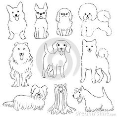 Illustration about Group of small dogs , hand drawn line art by pen. Illustration of character, animal, illustration - 112310662 Cat And Dog Drawing, Dog Drawing Simple, Small Puppies, Small Dogs, Drawing Reference, Line Drawing, Dog Artist, Doodle Art Journals, Dog Branding