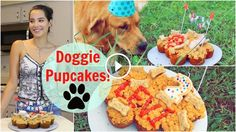 Homemade Cupcakes For Dogs! - Dog Videos