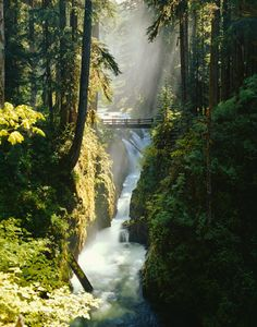 Sol Duc Falls, Olympic National Park, Washington State, one of my favorite places I've been. The hot springs are so relaxing. Oh The Places You'll Go, Places To Travel, Places To Visit, Travel Destinations, Magic Places, Parque Natural, Columbia River Gorge, Photos Voyages, Le Far West