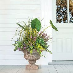 Summertime Flair! - Spectacular Container Gardening Ideas - Southern Living