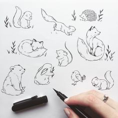 Woodland critters illustration, brush pen, lines, … – – tiere Woodland Critters, Woodland Creatures, Woodland Animals, Woodland Art, Animal Sketches, Drawing Sketches, Animal Doodles, Nature Tattoos, Trendy Tattoos