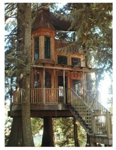 Extreme Tree Houses | tree house to the extreme