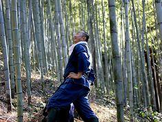 竹虎 虎斑竹専門店竹虎 ANA 全日本空輸株式会社 全日空 SKYEYE 飛行機 airplane bamboo TAKETORA