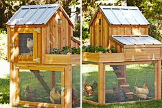 Multi-Level Cedar Chicken Coop Design - http://www.decorationarch.com/creative-ideas/multi-level-cedar-chicken-coop-design.html