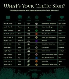 celtic signs astrology: