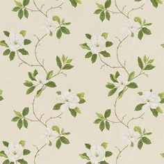 Sweet Bay by Sanderson - Ivory / Green : Wallpaper Direct Green Curtains, Curtains With Blinds, Sanderson Fabric, Illustration Blume, Magnolia Trees, Summer Prints, Fabric Wallpaper, Bedroom Wallpaper, Pattern Wallpaper