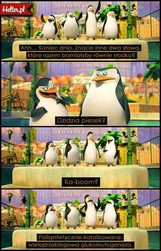 HELTER Przedstawia Kultowe Cytaty Filmowe w Formie Graficznej. Dziel się Cytatami z Twoich Ulubionych Filmów! Penguins Of Madagascar, Very Funny Memes, I Love Anime, Dark Net, Stowa, Jokes, Lol, Cartoon, Humor