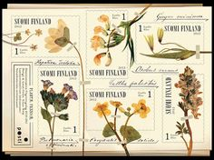 This sheet of six plant stamps is like a little herbario: liverwort, spring pea, least gagea, lung-wort, marsh marigold, and spring corydalis. The nostalgic feelings comes from the yellow toned paper and the old fashioned Latin names.   The plants were selected for the miniature booklet designed and photographed by Klaus Welp according to visual and scientific values.