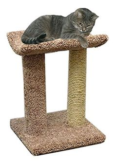 Wood Cat Furniture Scracher Cat Perch Brown Carpet *** Click image for more details. Note: It's an affiliate link to Amazon.