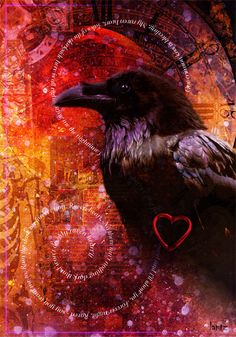 "'Raven Heart' by Timothy Lantz ""Archeon"" via DeviantArt"