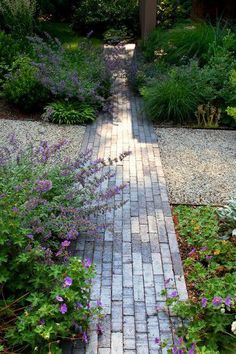 contemporary landscape by Matthew Cunningham Landscape Design- brick path meets pebbles Modern Landscape Design, Landscape Plans, Modern Landscaping, Contemporary Landscape, Garden Landscaping, Landscaping Design, Brick Pathway, Brick Paving, Gravel Path