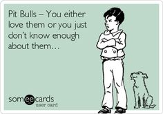 Pit Bulls: You either love them, or you just don't know enough about them!