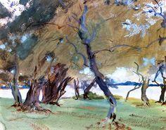 The Athenaeum - Olive Trees (John Singer Sargent - )