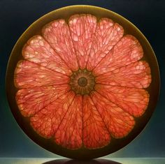 Pink grapefruit oil Painting by Dennis Wojtkiewicz.