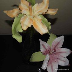 Mijn 2 vriendinnen maakten deze prachtige lelies van suiker (flowerpaste)