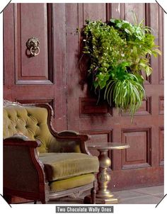 I want one of these Woolly Pockets! So cool - hang plants on the wall like art!