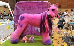 A dog is NOT a pink pony