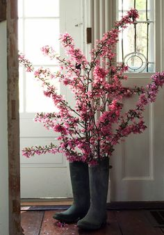 Great idea for flowering tree branches... need to find an old pair of water-proof boots!