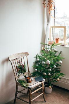"corinaesquivel: "" Christmas 2014 """