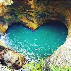 Heart-shaped natural pool. Killarney Glen Gold Coast Australia. - Photo…