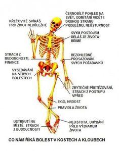 Cvičení na klouby a páteř :: Brána zdraví