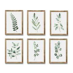 Your place to buy and sell all things handmade This watercolor print features a beautiful hand-painted watercolor eucalyptus and leaves print in a gorgeous green color palette. Place this in your dini Decoration Plante, Green Colour Palette, Colour Palettes, Digital Wall, Art Mural, Easy Home Decor, Home And Deco, Leaf Prints, Botanical Prints