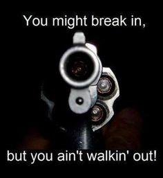 Break in, not walking, Guns, Home, Defense