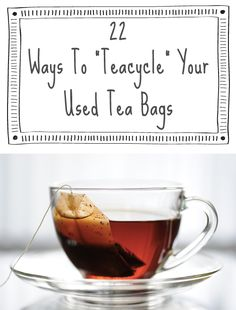 "Don't throw away those used tea bags! ""Teacycle"" them! :-) Discover lots of great uses for tea and tea bags that have nothing to do with a cup!"