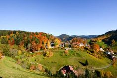 Caf� Pension Waldfrieden Bad Peterstal-Griesbach Set 37 km from Strasbourg and 37 km from Baden-Baden, Caf? Pension Waldfrieden offers pet-friendly accommodation in Bad Peterstal-Griesbach. The unit is 39 km from Rust. Free private parking is available on site.