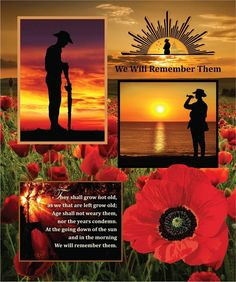 Anzac We Will Remember Them Cotton Quilting Fabric Panel - jrs fabrics Remembrance Day Pictures, Remembrance Day Quotes, Remembrance Day Poppy, Anzac Day Quotes, Anzac Day Australia, Lest We Forget Anzac, Anzac Poppy, Anzac Soldiers, Vintage Pop Art
