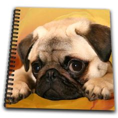 3dRose db_3644_1 Pug-Drawing Book, 8 by 8-Inch - http://weloveourpugs.net/?product=3drose-db_3644_1-pug-drawing-book-8-by-8-inch