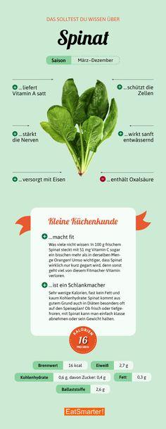 Das solltest du über Spinat wissen | eatsmarter.de #spinat #infografik #ernährung