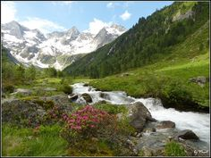 Österreich Tirol Brandberg  Bodenalm