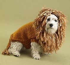 King of the Beasts (Lion) Dog Sweater - free pattern from Lion Brand Yarn
