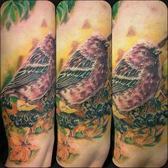 awesome Top 100 Bird Tattoos - http://4develop.com.ua/2016/01/29/top-100-bird-tattoos/ Check more at http://4develop.com.ua/2016/01/29/top-100-bird-tattoos/