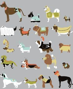 Illustrations of dogs!  Wish I knew who the artist was...