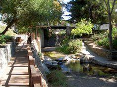 San Luis Obispo Creek....many nice days sitting alongside the creek drinking coffee or eating frozen yogurt. wonderful memories.
