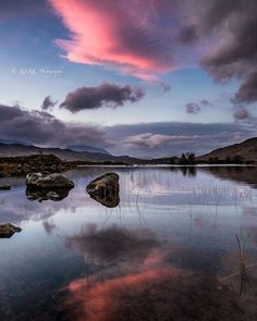 Loch na h-Achlaise - a little color, Rannoch Moor