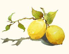 watercolour lemon - Google Search
