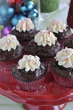 Chocolate Peppermint Ganache Cupcakes