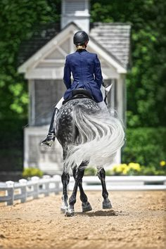 Competitor at a nationally recognized Dressage competition in Wayne, IL.  This rider is riding an Andalusion stallion.