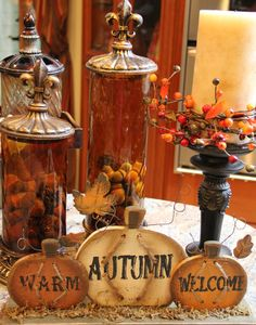 Savvy Seasons by Liz: Cloches And Glassware Displays
