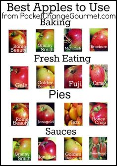 "Another Pinner wrote: ""An easy guide to the best apples to use in cooking & baking. I disagree with the Honeycrisp only under Pies though - it is the BEST one for fresh eating Think Food, Food For Thought, Do It Yourself Food, Food Facts, Baking Tips, Apple Recipes, Fruits And Veggies, Vegetables, No Cook Meals"