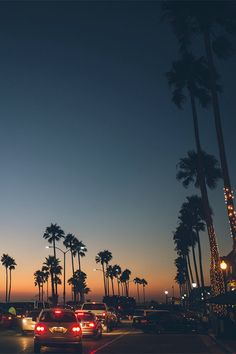 cali palm trees and a sunset - beautiful world ✧ - Wallpaper Wallpaper Travel, Nature Iphone Wallpaper, Wallpaper Backgrounds, Wallpaper Ideas, Beach Wallpaper, Wallpaper Desktop, Vintage Wallpaper, Widescreen Wallpaper, Iphone Backgrounds