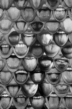 Tongue  Lengua  Tongue
