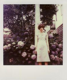 #polaroid #flower